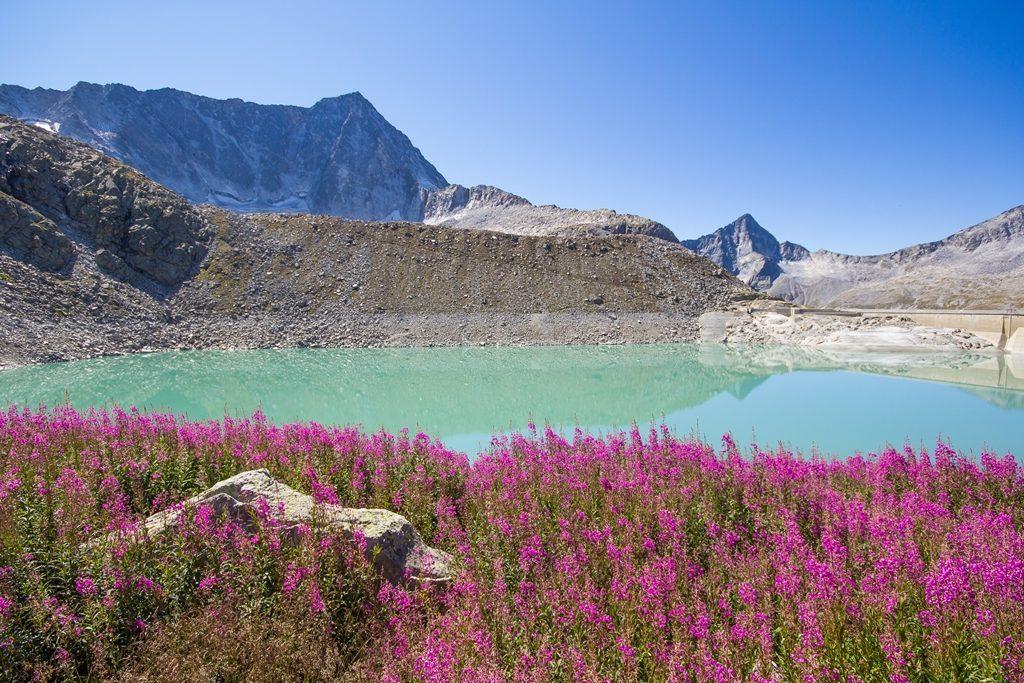 Lago Venerocolo e cima Adamello - ph Dario Bonzi